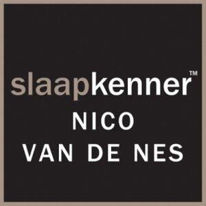 Nico van de Nes langedijk logo