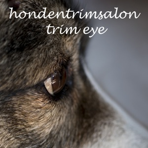Hondentrimsalon Trim Eye logo