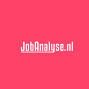 JOB Analyse logo