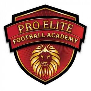 Pro Elite Football Academy logo