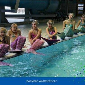 Zwembad Waardergolf image 3