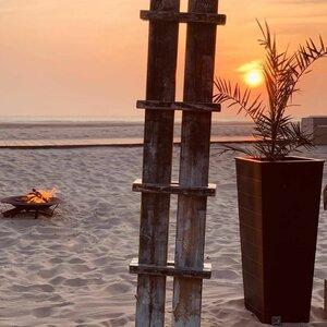 Strandpaviljoen Zeezicht image 1