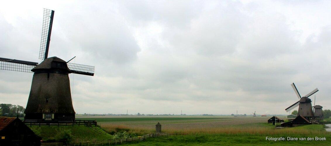 """Noord-Holland zet poldermolens in bij strijd tegen wateroverlast: """"Steeds meer stortbuien"""""""