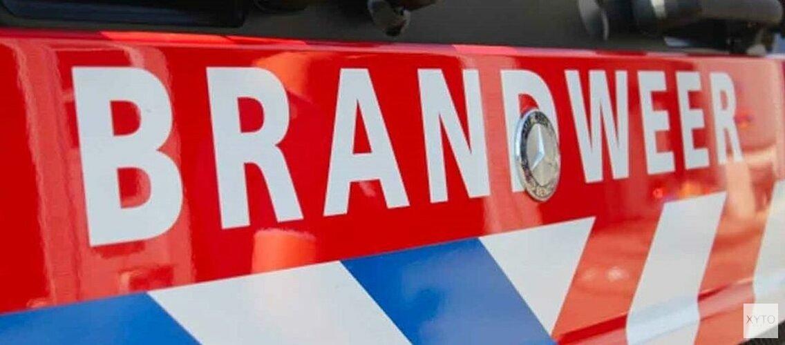 Kleine duinbrand in Schoorl, grote brandweermacht op de been
