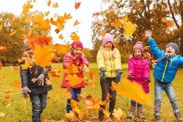 Kom genieten van de herfst bij Museum BroekerVeiling!